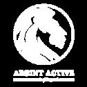 Argint-Active-Investitii-metale-pretioase-lingou-aur-lingouri-aur-moneda-argint-monede-argint-aur-pur-pret-magazin-1